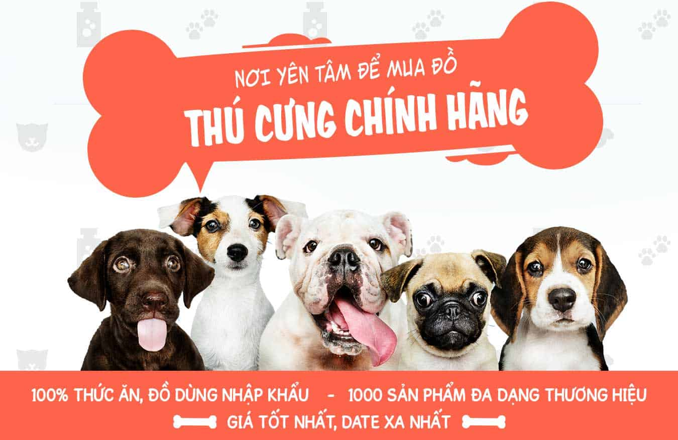 Banner Pet Shop Sài Gòn 1