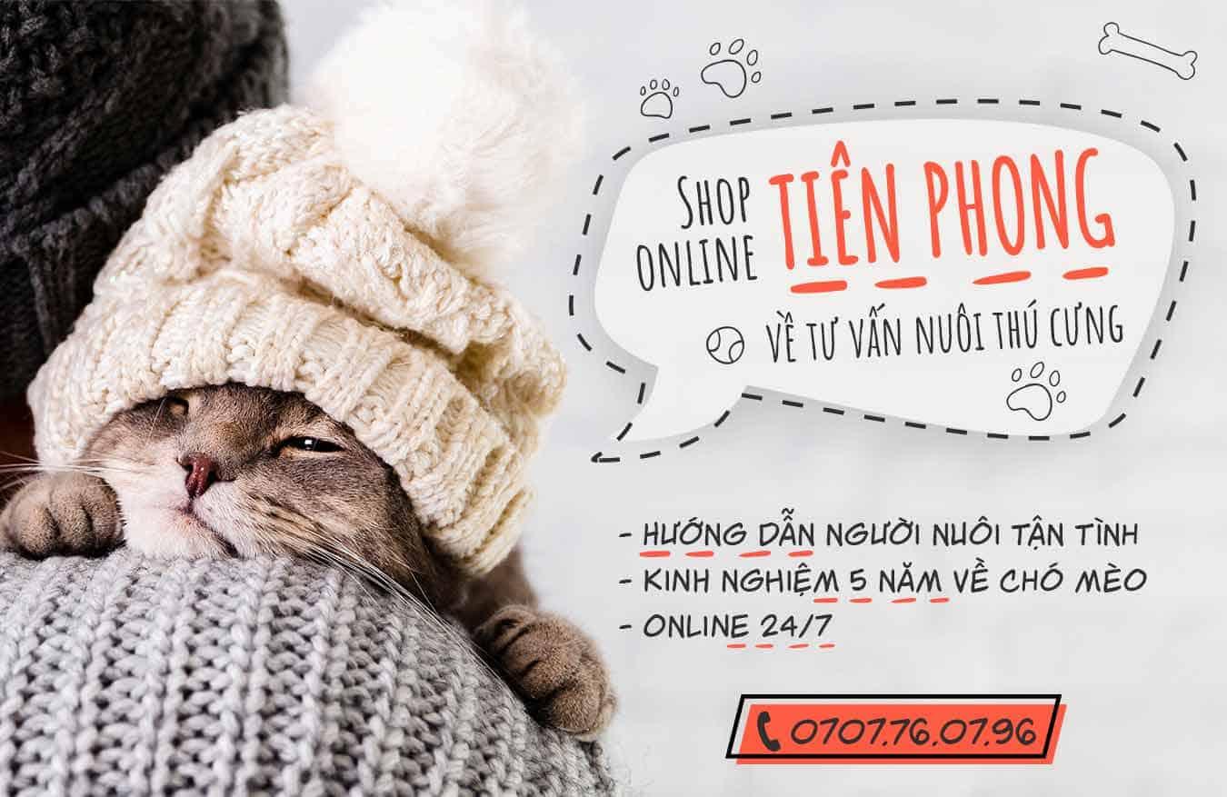 Banner Pet Shop Sài Gòn 3