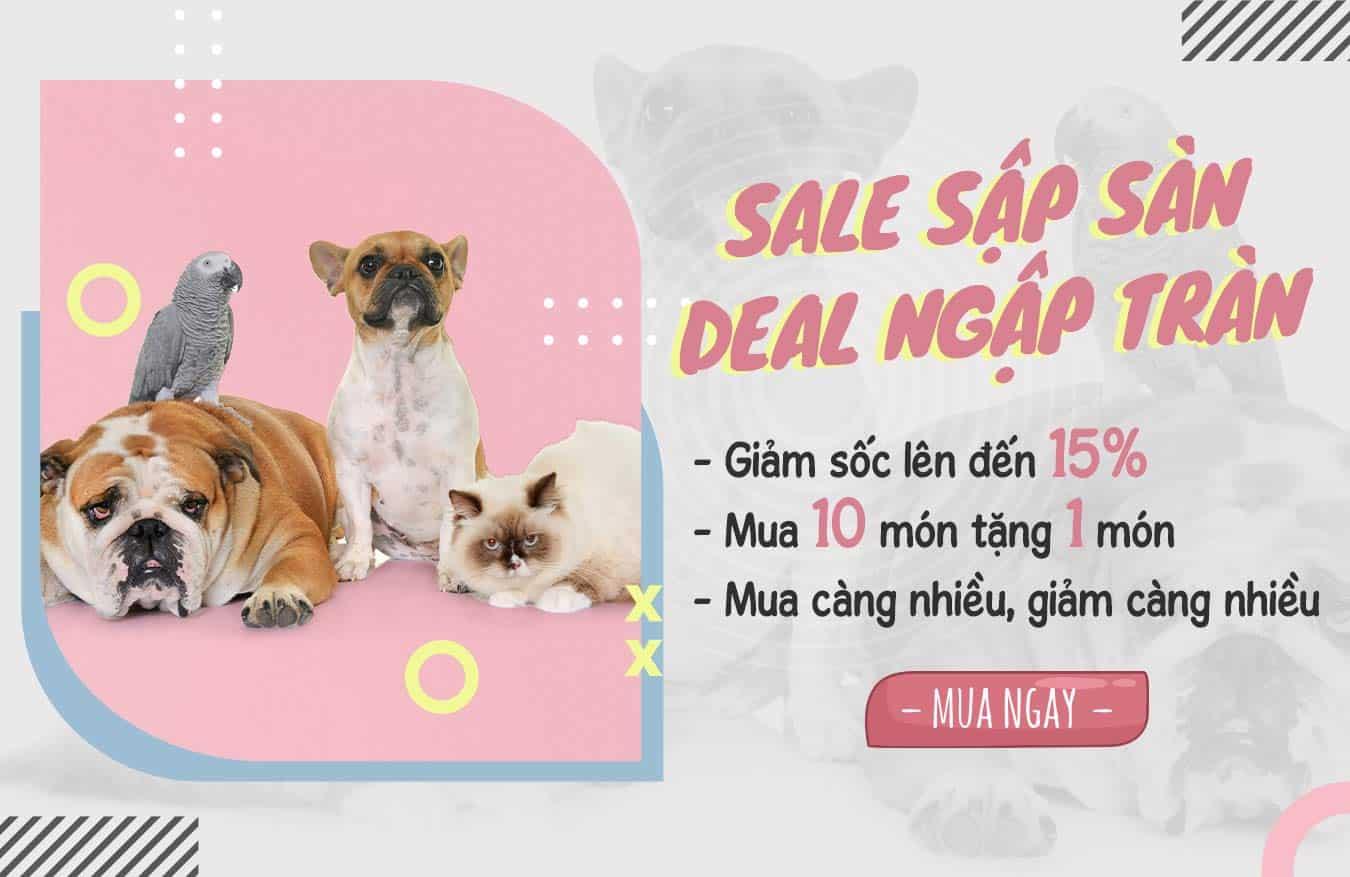 Banner Pet Shop Sài Gòn 4