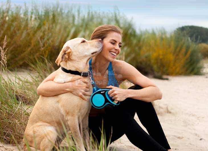 Dây Dắt Chó Tự Động Flexi New Comfort