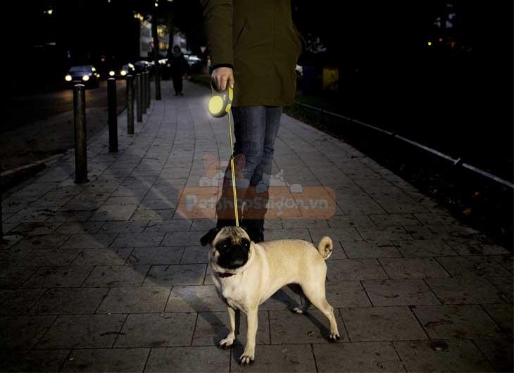 Dây Dắt Chó Tự Động Flexi New Neon
