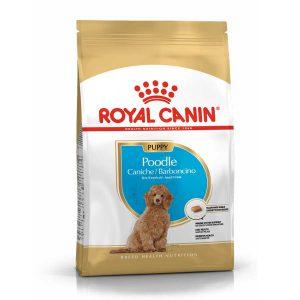 Thức Ăn Cho Chó Con Royal Canin Poodle Puppy (500g)