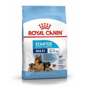 Thức Ăn Cho Chó Mẹ Và Con Royal Canin MAXI Starter (15kg)