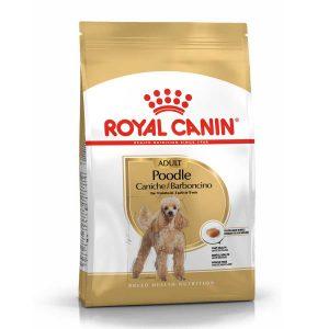 Thức Ăn Cho Chó Trưởng Thành Royal Canin Poodle Adult (500g)