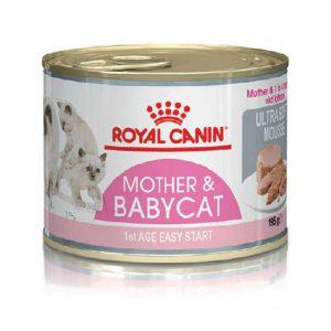 Pate Cho Mèo Mẹ Và Con Royal Canin Mother & Babycat (195g)