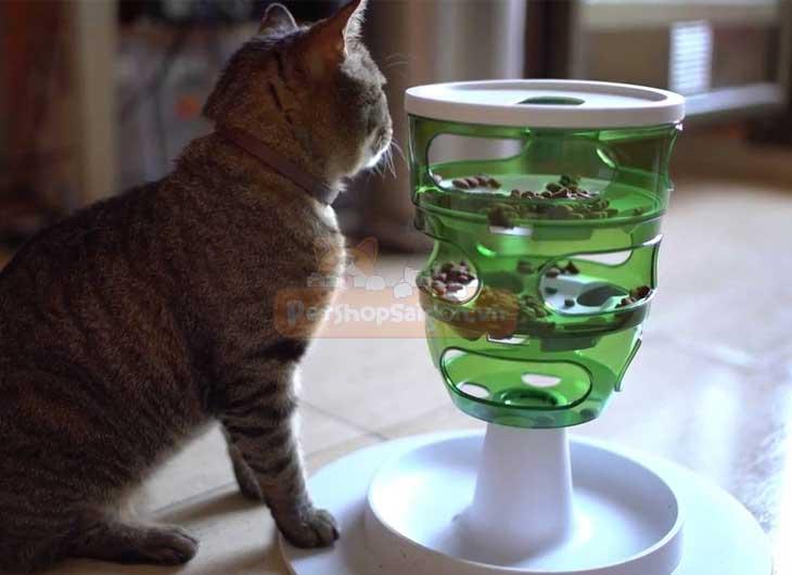 Chén Ăn Thông Minh Cho Mèo Hagen Catit