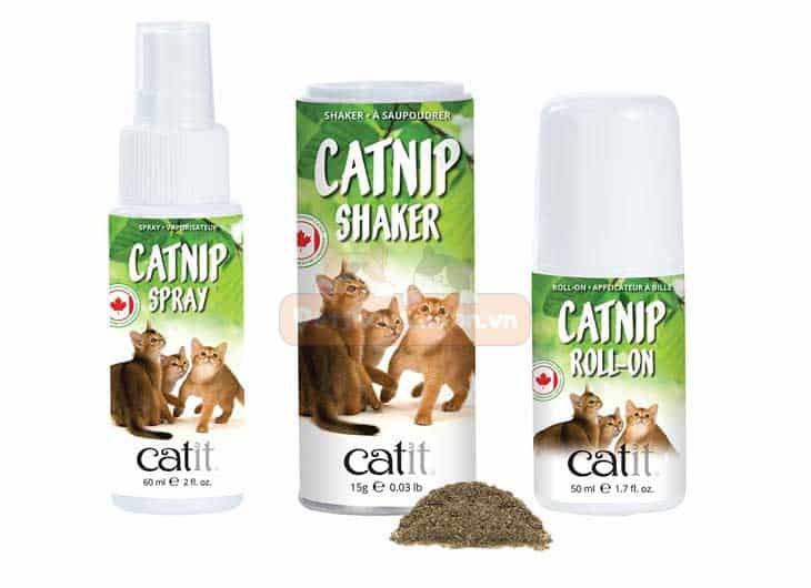 Cỏ Mèo Dạng Bột Hagen Catit