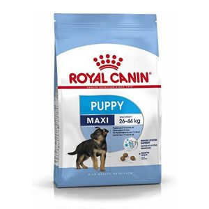 Thức Ăn Cho Chó Con Royal Canin MAXI Puppy (1kg)