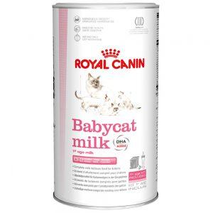 Sữa Cho Mèo Con Royal Canin Baby Cat Milk (300g)