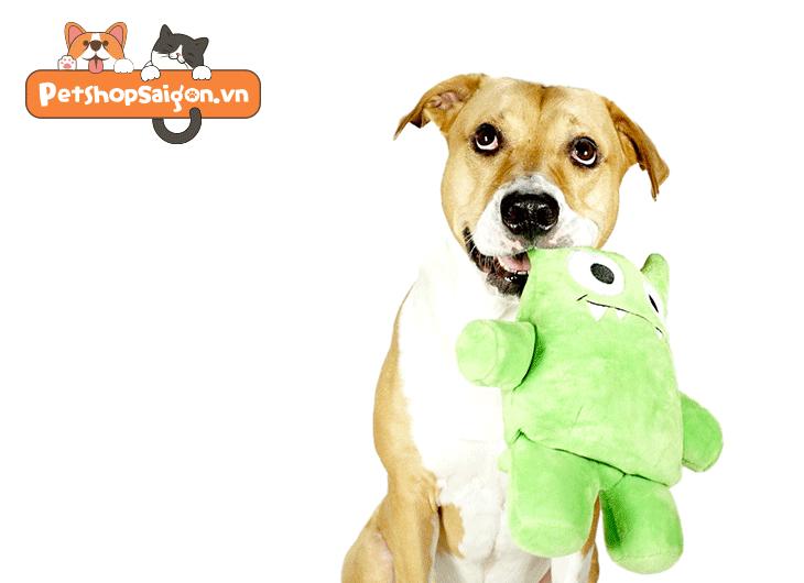 đồ chơi cho chó tphcm