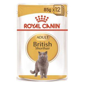Pate Cho Mèo Trưởng Thành Anh Lông Ngắn Royal Canin British (1gói)