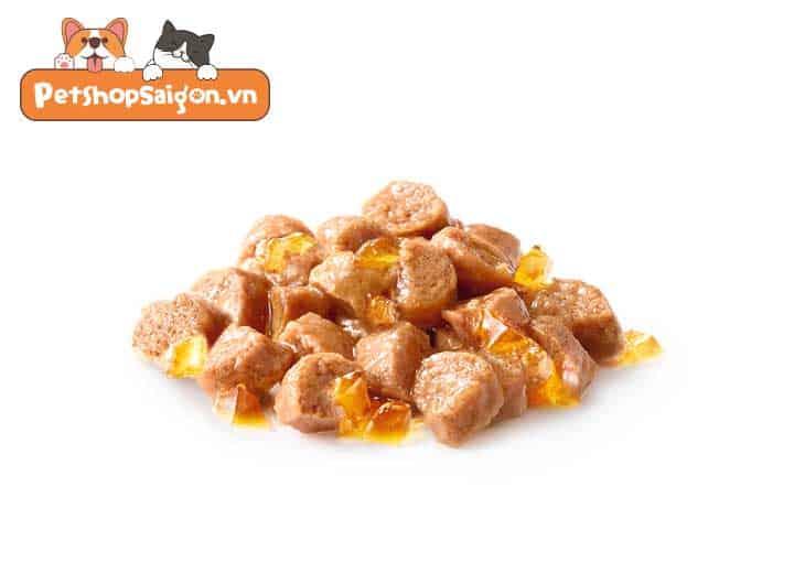 Royal Canin Kitten Gravy/Jelly/Loaf