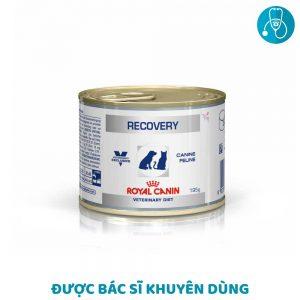 Pate Cho Chó Mèo Hồi Phục Bệnh Royal Canin Recovery (195g)