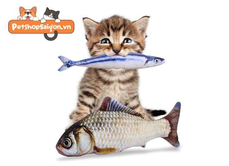 Top 4 dinh dưỡng bắt buộc mèo phải có