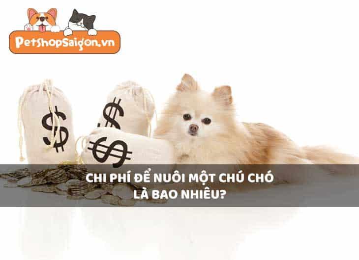Chi phí để nuôi một chú chó là bao nhiêu?