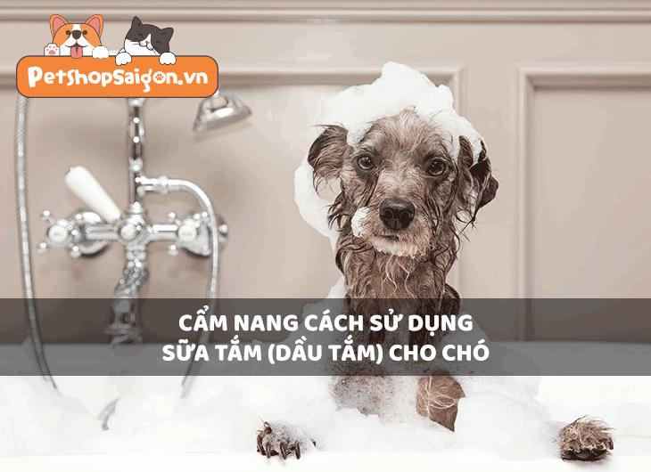 Cẩm nang cách sử dụng sữa tắm (dầu tắm) cho chó