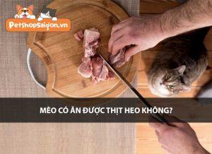 Mèo có ăn được thịt heo không?